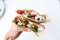 Low Carb Shredded Greek Pork Pita