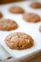 Macro Friendly Pumpkin Chocolate Chip Cookie www.lillieeatsandtells.com