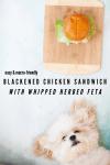 www.lillieeatsandtells.com recipe for blackened chicken sandwich