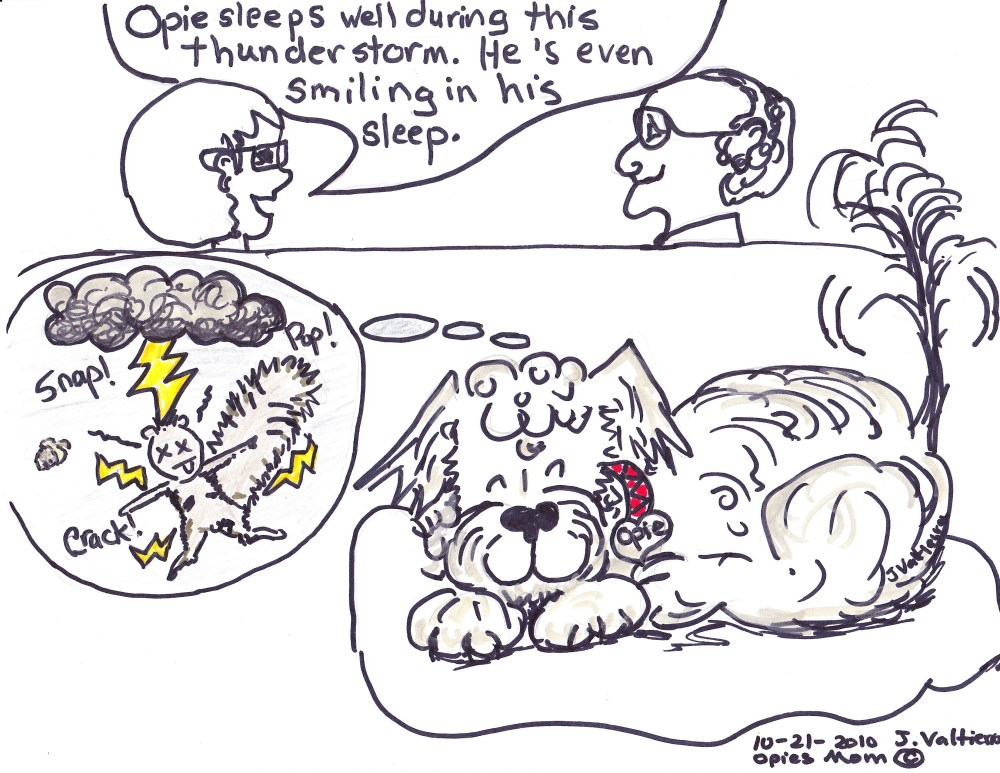 Opie Cartoons -- or Graphic Snorkie Musings (1/6)