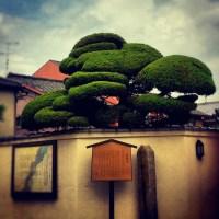 Day 5: Kyoto: Arashiyama, Otagi Nenbutsu-Ji