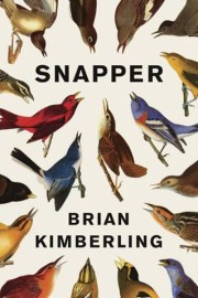 """From Laura Summers. Here's why I recommend it: Aside from shamelessly spotlighting a fantastic writer and the brilliant Kimberling clan, I particularly want to read this book to help myself make some sense of having lived--and grown up some--in Indiana. Rated a """"Best Book of the Year"""" by NPR in 2013, this book seems to have been waiting for the right time on my list of summer reads as I face moving out of the Midwest. Written in vignettes, this book also reads more like a coherent collection of short stories which will be perfect for summertime pick-up and go. Snapper centers on a young ornithologist who navigates through love, childhood roots, and the world beyond the environment he has always known. He explores the landscape of Indiana from Evansville to ties with Indiana University, and is met with the fascinating folks who move both transient and committed to this state. While this book is admittedly a coming-of-age story, Kimberling's unique styling and voice tailors his fictionalized memoir in such a way that it transcends into something universal that I look forward to carrying around with me into my own new chapter."""