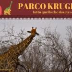 come organizzare un safari al parco kruger sudafrica