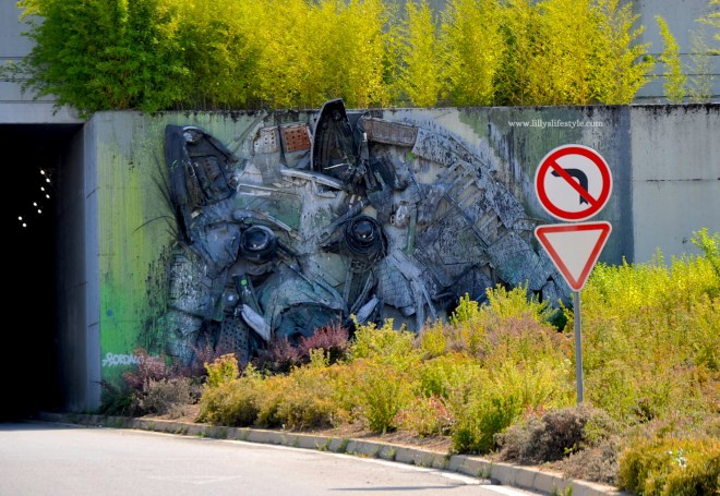 arte urbana bragança portogallo