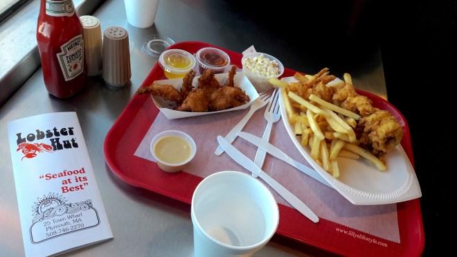 plymouth USA dove e cosa mangiare
