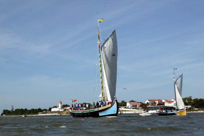 barche tipiche moita portogallo