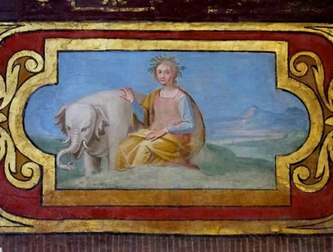 elefante annone in vaticano