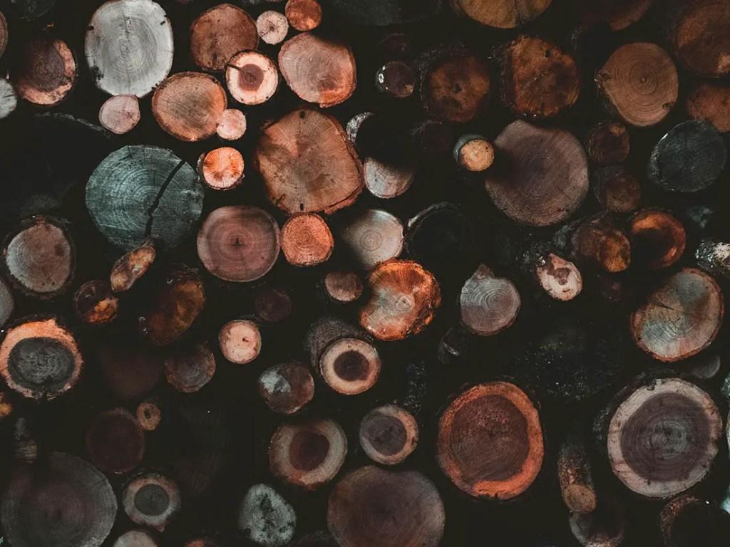 empilement de troncs d'arbres