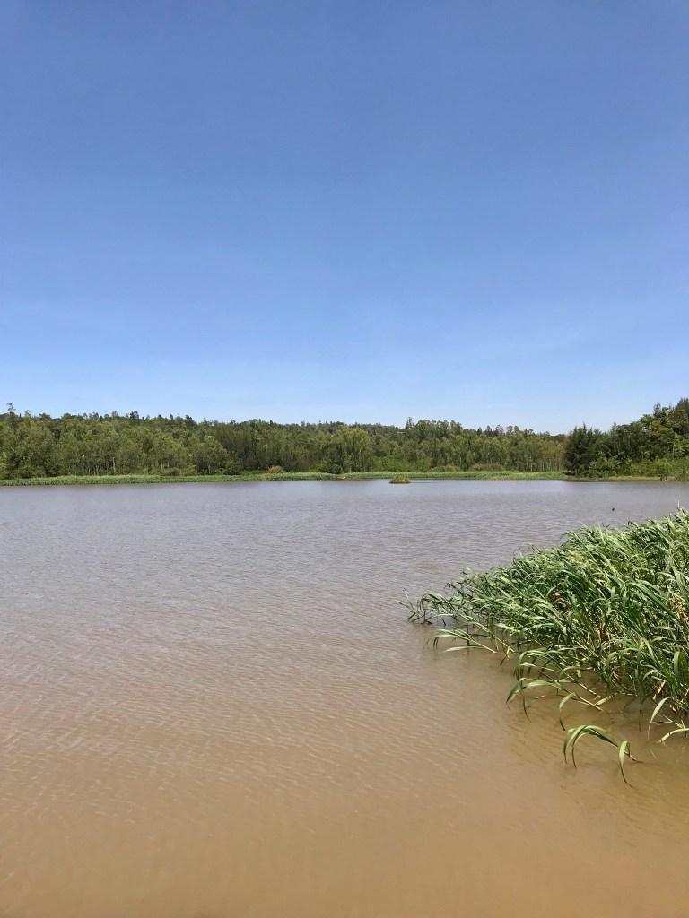 Lilmissbelle- Kisumu