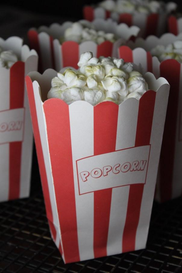 Popcorn Cupcake Bags