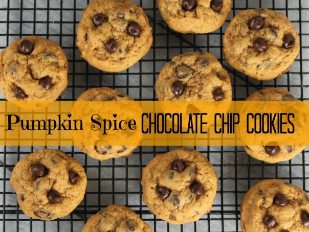 Pumpkin Spice Chocolate Chip Cookies   Lil Miss Cakes