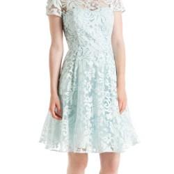 d953fe04d75 Ted Baker Light Blue Caree Floral Lace Dress Blue Product 2
