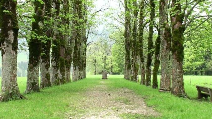 chartreuse-monastery