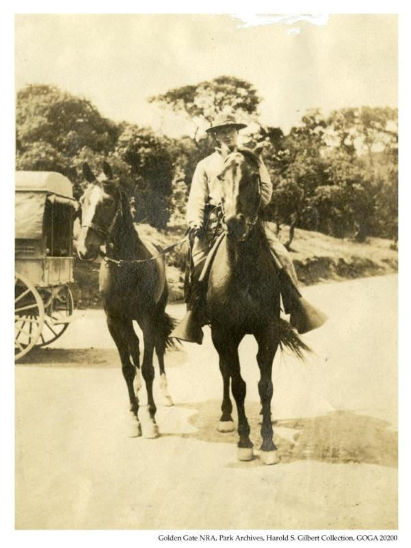 Angel Island_Horse1