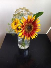 Sunflower, Calendula, Dill, Israeli Ruskus