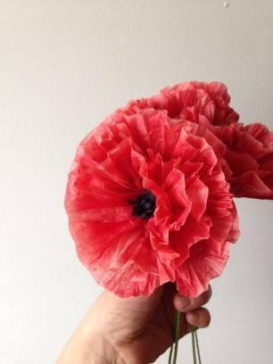 Red Paper Poppy
