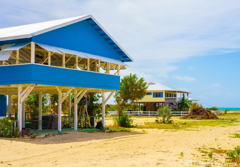 blue cottages on a beach in barbuda