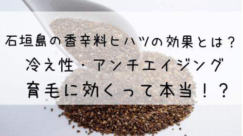 石垣島の香辛料ヒハツの効果とは?冷え性・アンチエイジング・育毛に効くって本当!?