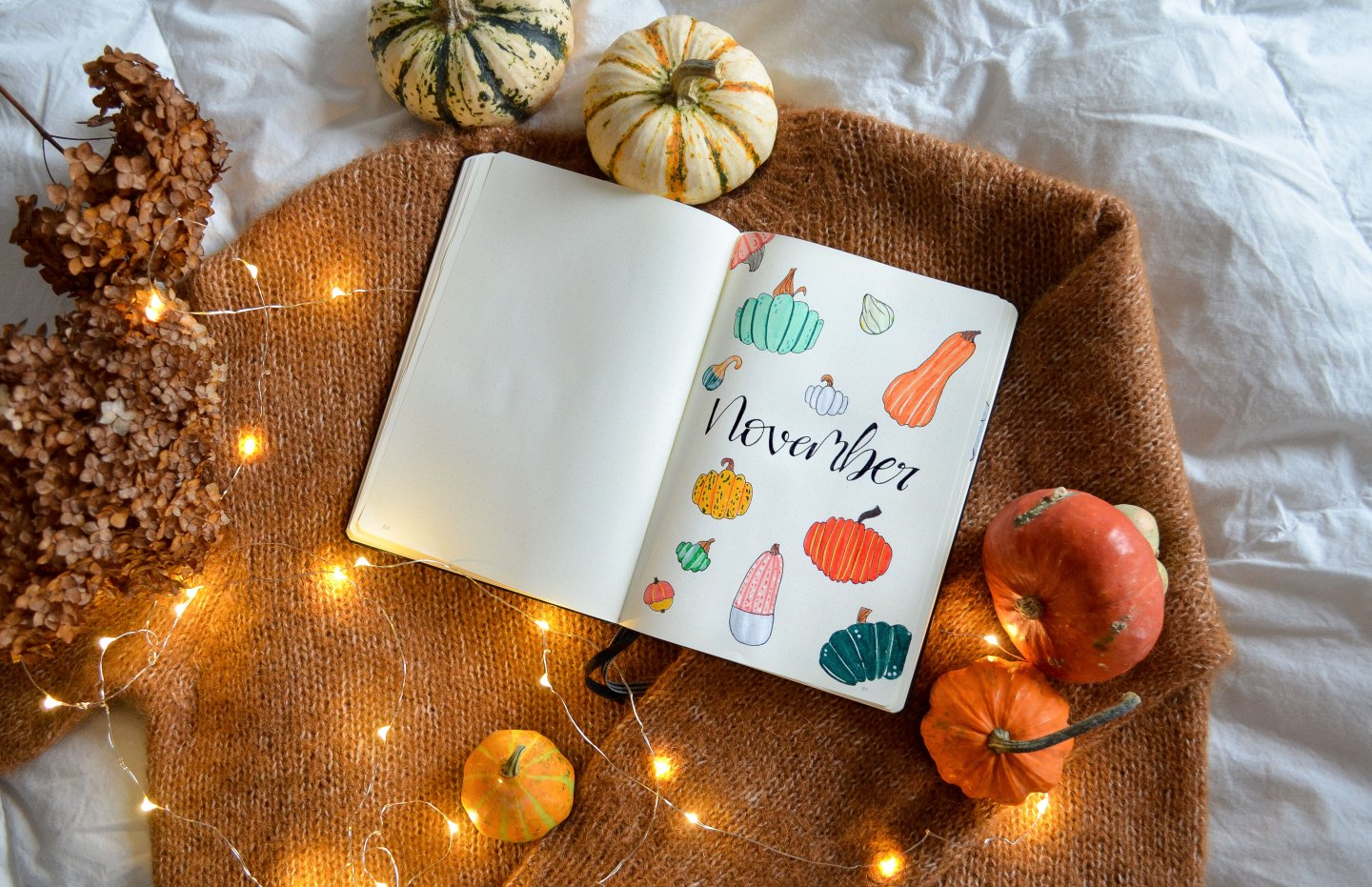 Lily's Colours November Bullet Journal: Pumpkin Bujo Setup