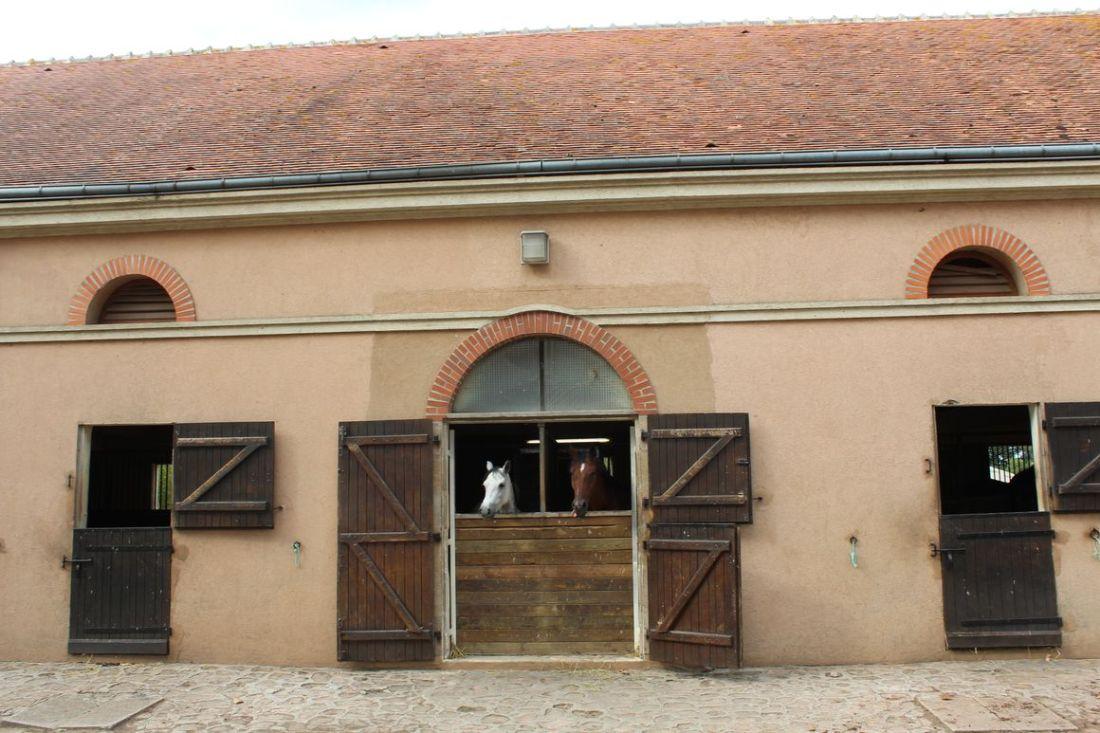 lilytoutsourire chateau d ygrande_25