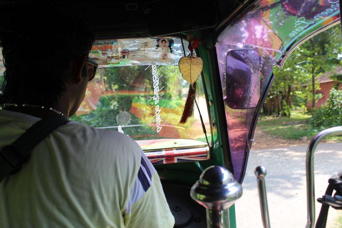 lilytoutsourire - 12 jours au sri lanka