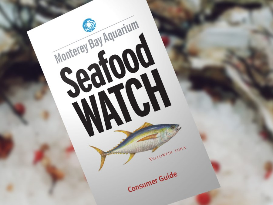 seafoodwatch-consumer-guide