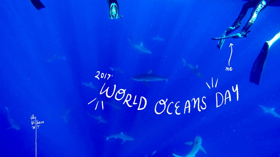 worldoceansday2017_lilywilliams