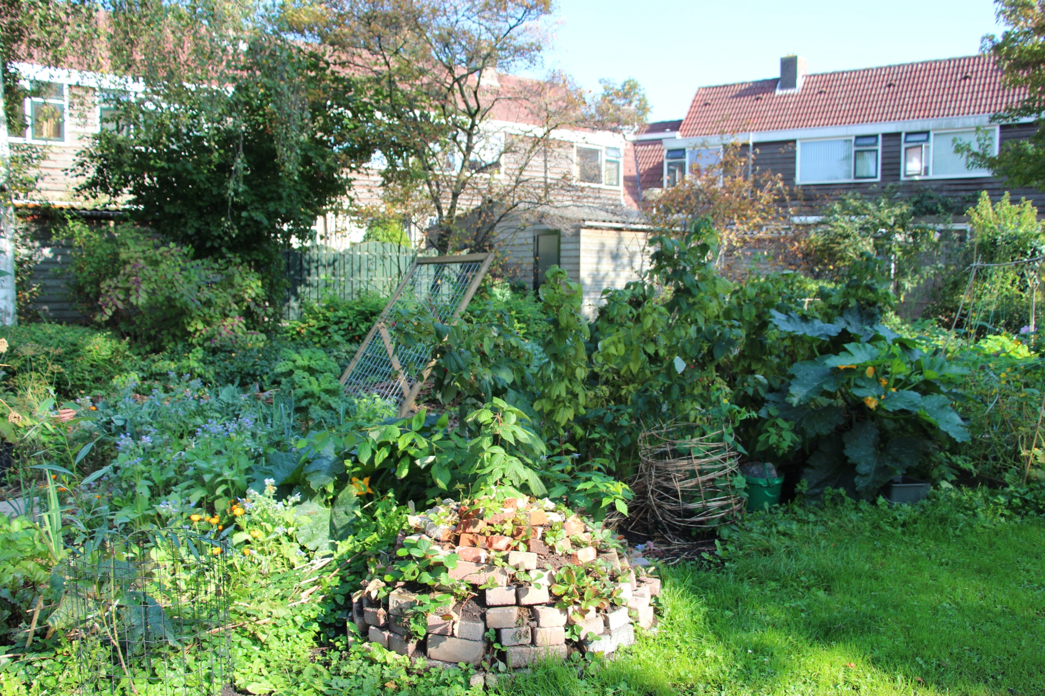 Permaculture Garden You - Garden Ftempo on Backyard Permaculture Design id=28046