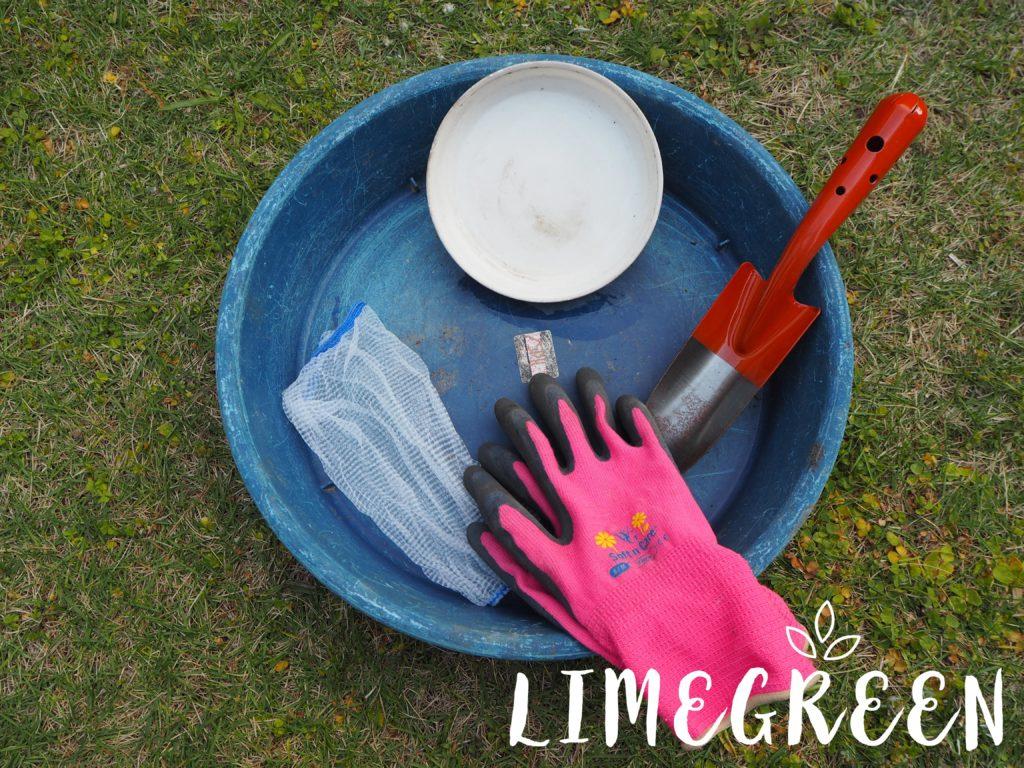 チューリップの球根掘り上げに使う道具