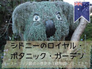 シドニー王立植物園のインスタレーション