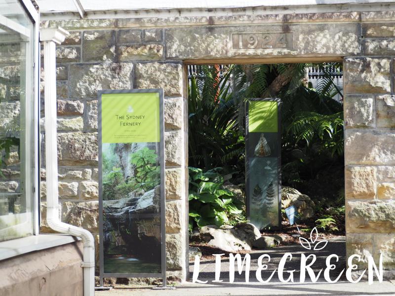 シドニーのロイヤル・ボタニック・ガーデン