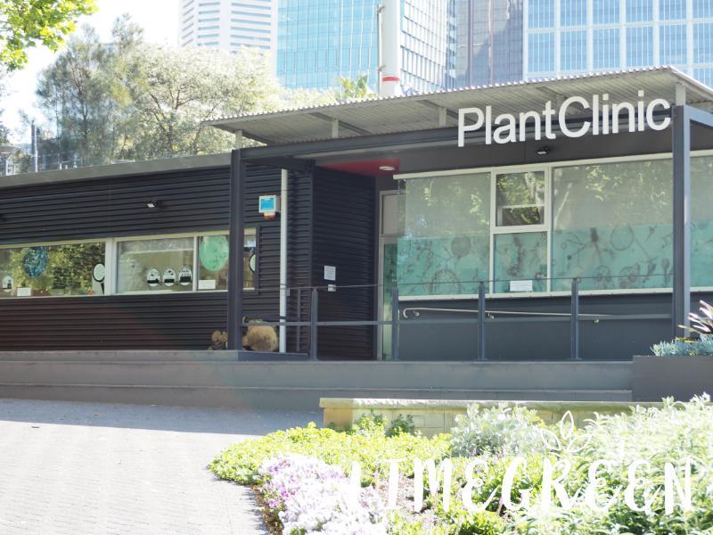 シドニーのロイヤル・ボタニック・ガーデンの植物病院