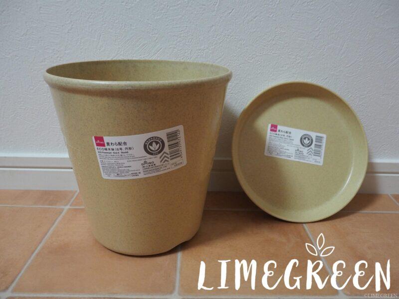 ダイソーの麦わら配合ECO植木鉢