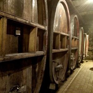 Zaehringer_cellar