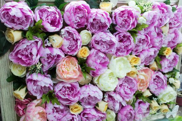 Frühlings Blumen Rahmen