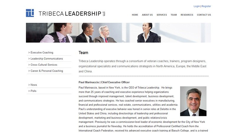 consultant website design by LIMIT8
