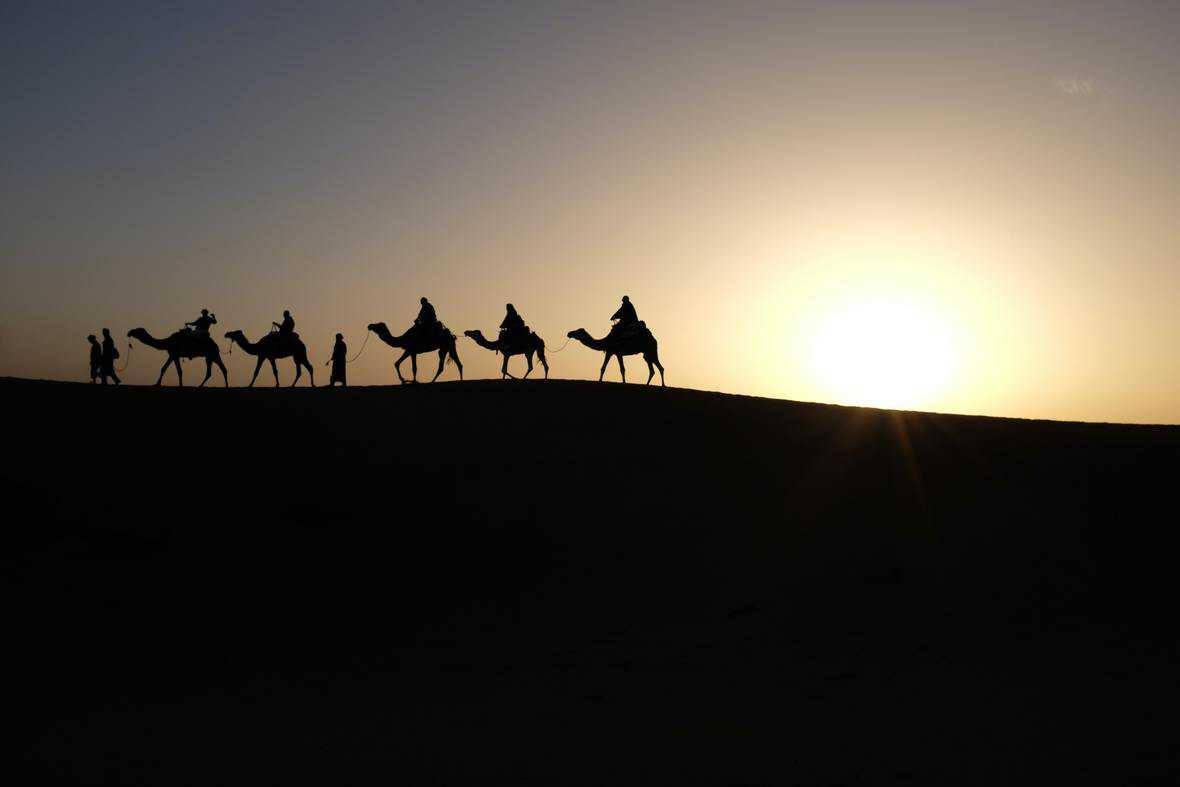 camel train on the skyline at sunset