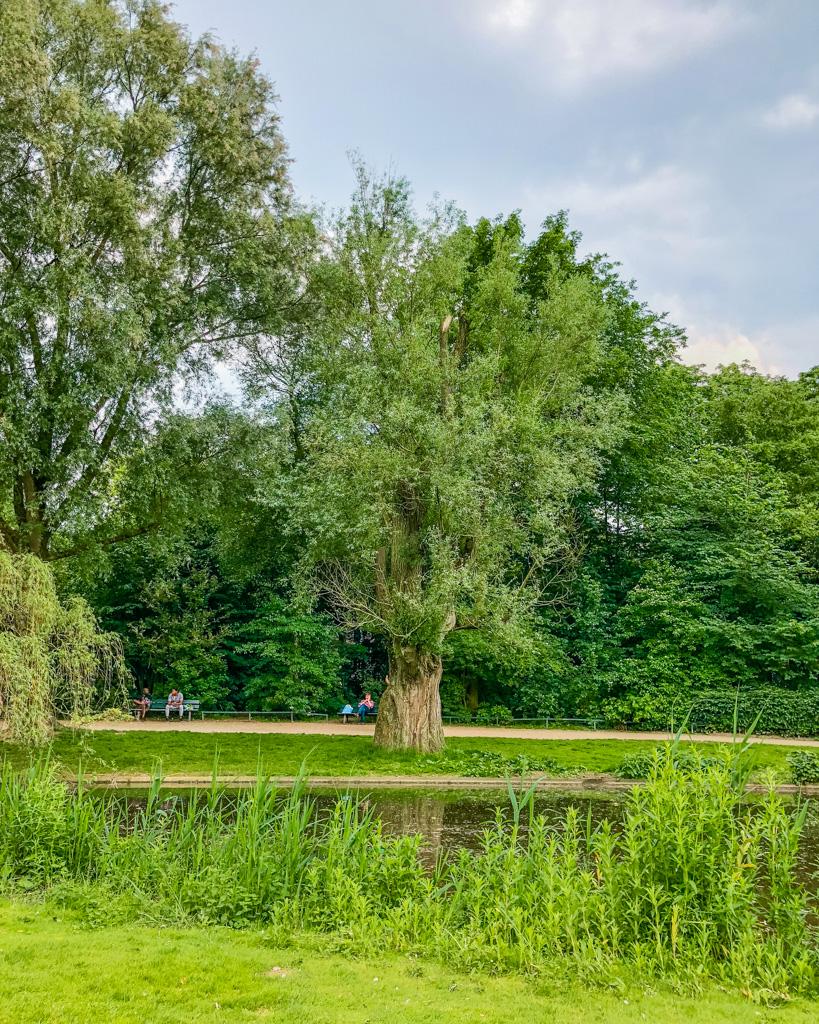 Sarphatipark, park in De Pijp - Amsterdam