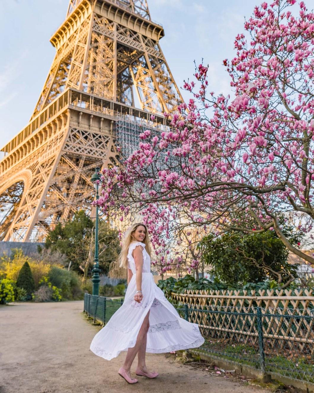 Magnolias in bloom at the Eiffel Tower - Paris