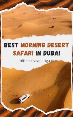 best morning dessert safari in dubai 533x800 - Best Morning Desert Safari in Dubai