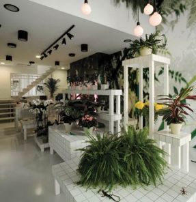 aktipis-flowershop-by-point-supreme-architects-7