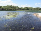 Lagoa Cabiúnas