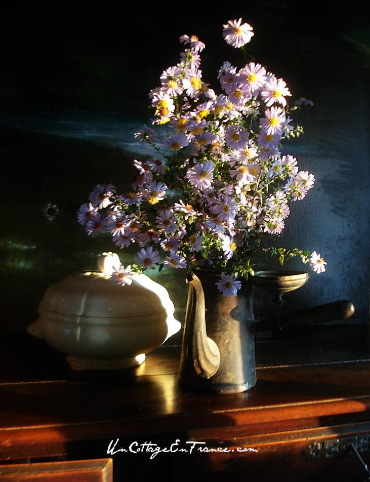 Le bouquet d'Asters de septembre