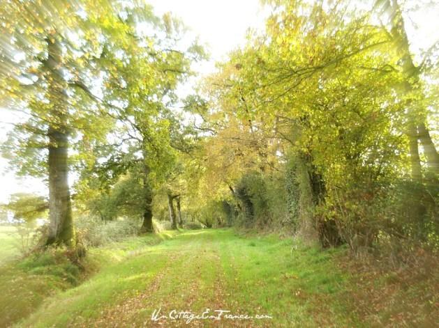 Le chemin des chapelle - Lagudet