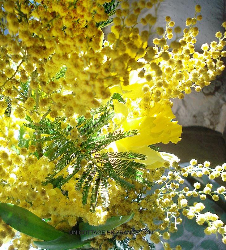 Bouquet fleurs jaunes 7