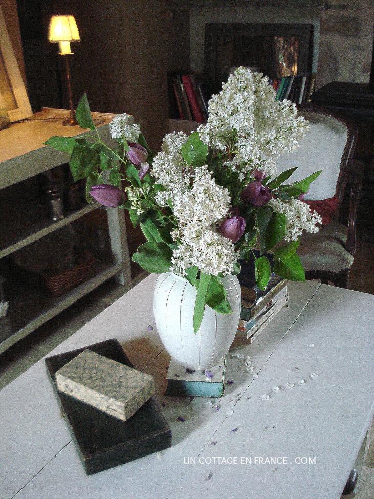 bouquet de lilas blanc