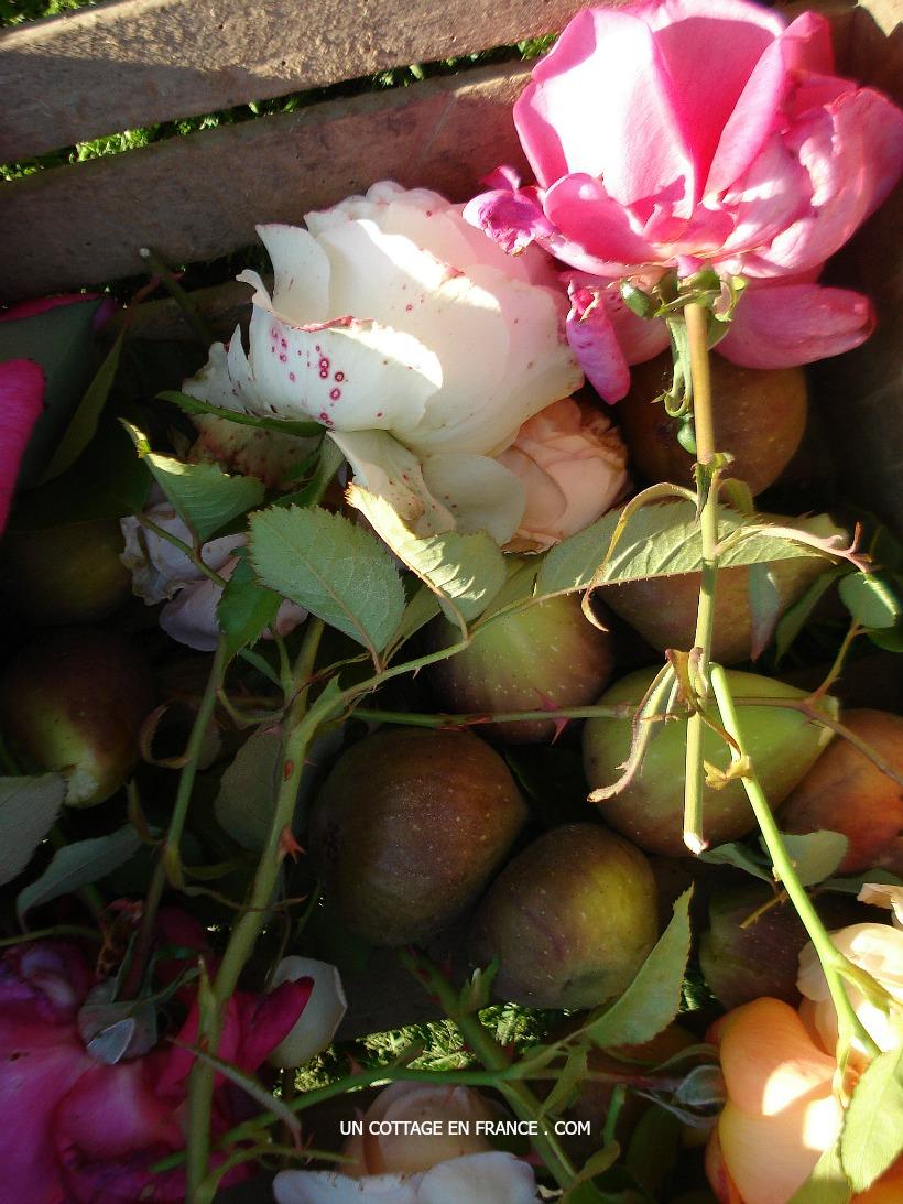 Roses et figues, blog maison de campagnehttps://uncottageenfrance.com/2015/10/21/il-y-a-des-bouquets-plein-denergie-some-bouquets-convey-energy-more-than-others/
