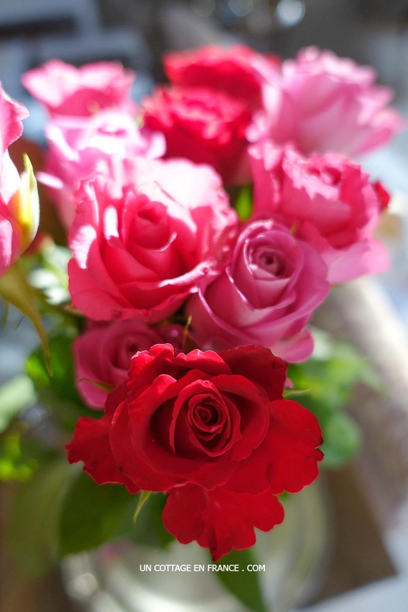 Roses rouges - un cottage en france 3