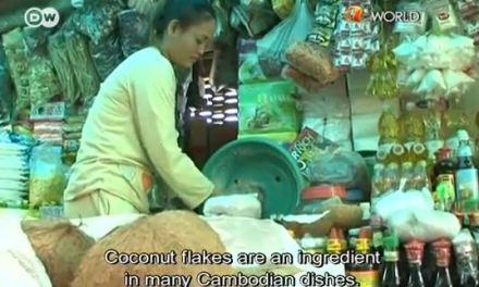 Casca de coco vira carvão no Camboja