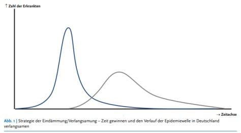 La curva adorada por los epidemiólogos.
